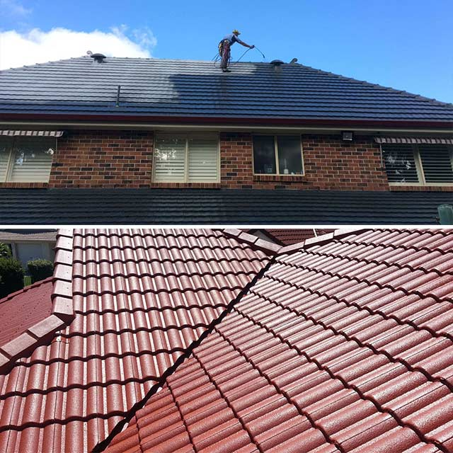 Roof Painting Services Roof Repairs Sydney